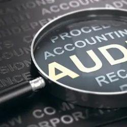 Audit-vacatures